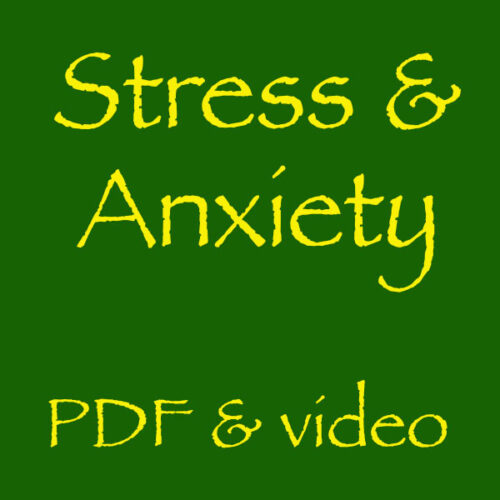 Stress and Anxiety Self Help Workshop